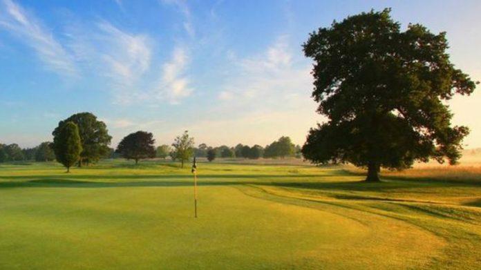 Coinslot Maggi Golf