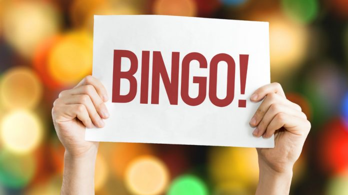 Coinslot Bingo research