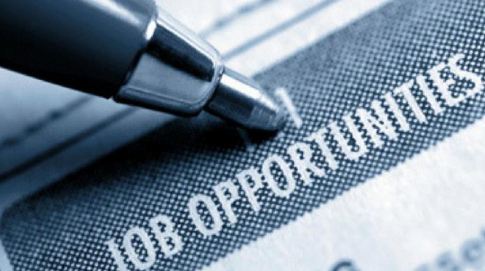 26cp_employment drop