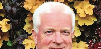 Paul Kelly Balppa