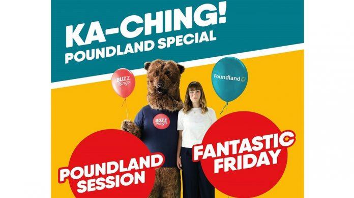 buzz bingo poundland