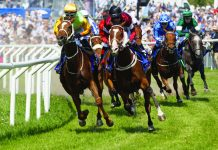 Horse Racing Gambling Review Affordability checks
